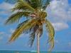 Karibská pláž, Tulum