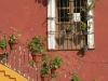Typicka fasáda domu, Guanajuato